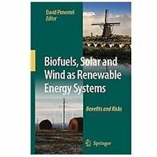 Biofuels, Solar and Wind as Renewable Energy Systems : Benefits and Risks...