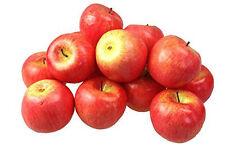 Déco Pommes 15 Pièce rouge Art de Fruits Légumes l'art artificiel