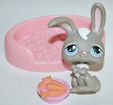Littlest Pet Shop #14 Gray & White Bunny Rabbit with Blue Eyes plus Accessories