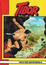 Tibor Buch 18 (Z1), Hethke
