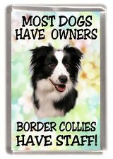 "Border Collie Dog Fridge Magnet ""Border Collies Have Staff!"" by Starprint"