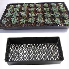 New High Quality Any Seed Sprouter Propagation Nursery Plastic Drain Plate Sieve