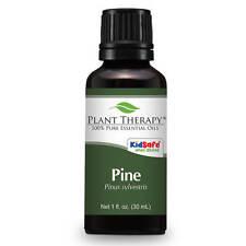 Pine Essential Oil 30 mL (1 oz). 100% Pure, Undiluted, Therapeutic Grade