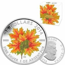 2014 Silver Maple Leaf $20 Proof Coin Glow in the Dark w/Box and COA Canada Mint