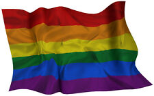 GAY RAINBOW  FLAG DECAL 2014 STYLE SIZE 300MM BY 189MM