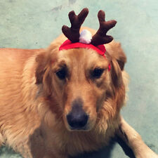 Pet Cat Dog Cap Hat for Animal Christmas Elk Deer Costume Toy Pet Accessories