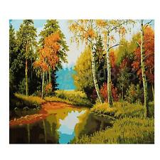 """16*20"""" DIY Craft Paint By Number Kit Oil Painting On Canvas Forest Scenery Decor"""