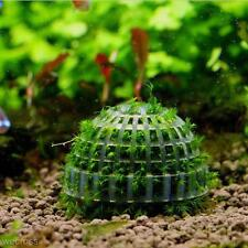 Aquarium Fish Tank Natural Mineral Moss Ball Filter for Live Plant Red Shrimp