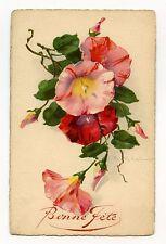 ILLUSTRATEUR C.KLEIN. FLEUR.FLOWERS.