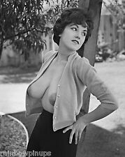 '67 PHOTO of BUSTY Sweater Girl, JULIE WILLS by RON VOGEL + BONUS! (NUDES)