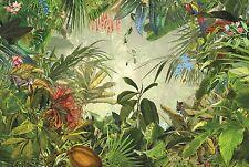 XXL Vlies Fototapete Komar Into The Wild XXL4-031 Dschungel Wald Tiere 368 x 248