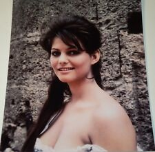 CLAUDIA CARDINALE /  8 X 10  COLOR  STRIKING  PHOTO