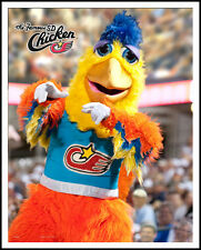 Famous San Diego Chicken Signed 8x10
