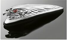 ORNAMENT FRIEZE CHROME-PLATED UNIVERSAL FENDER EAGLE SMALL BRIGHT LIGHT FRONT