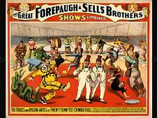 ADVERTISING CULTURAL CIRCUS FOREPAUGH SHOW CLOWN MUSIC ART POSTER PRINT LV638