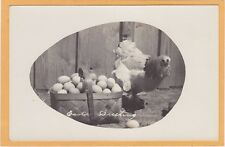 Real Photo Postcard RPPC - Easter Greeting Chicken and Basket of Eggs