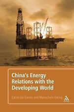 China's Energy Relations with the Developing World by Dorraj, Manochehr