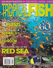 TROPICAL FISH Magazine - Sept 2012 - Fine - Aquarium Red Sea Angelfish Gouramis