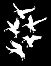 WHITE Vinyl Decal - 5 Geese landing goose duck hunt hunting country fun sticker