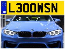 L300 WSN LAWSON LAWSONS LOWSON LOWSONS LOWE LOWES PRIVATE NUMBER PLATE FOCUS BMW