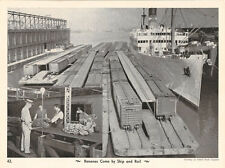 Rail Cars on Barges with Insert Picture of Workers Sorting Bananas - B & W Photo