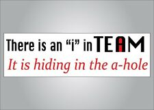 Funny bumper sticker - There is an I in team it is in the a hole - crude humor