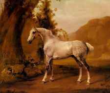 Oil painting Stubbs, George - A Grey Stallion nice horse In A Landscape