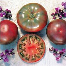 A 0.1g rare tomato seeds PURPLE CALABASH very tasty unusual color fruits