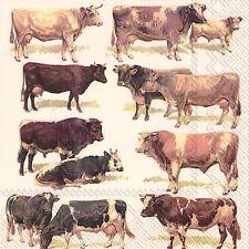 Vaches et taureaux animaux ferme papier table 33cm carré déjeuner serviettes 20 en pack