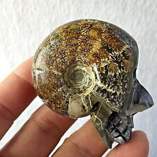 NEW LISTING! Natural crystal skull ammonite fossils carving SKULL healing