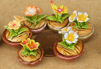 1:12 Scale Small Mixed Ceramic Flower In A Pot Doll House Miniatures Garden