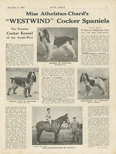 COCKER SPANIEL OUR DOGS 1943 DOG BREED KENNEL ADVERT PRINT PAGE WESTWIND KENNEL