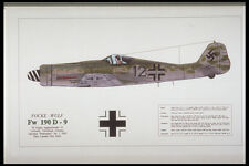 419022 Focke Wulf Fw 190 D 9 A4 Photo Print