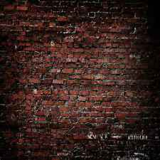 Brick Wall 10'x10' CP Backdrop Computer printed Scenic Background XLX-338