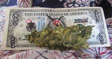 Photo. Cheap Mexican Marijuana