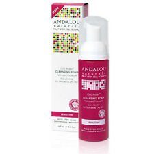 1000 Roses Cleansing Foam 5.5 Oz by Andalou Naturals