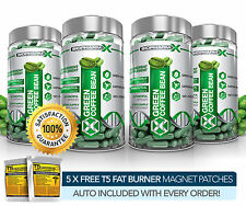 X4 Premium Green Coffee Bean Extract-legale Slimming / dieta & Perdita di Peso Pillole