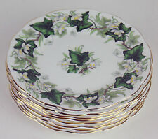 "8 x BREAD PLATES 6 1/4"" Vintage Royal Albert IVY LEA green vines England"