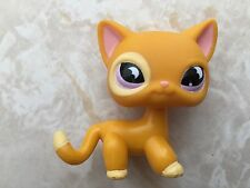 Littlest Pet Shop RARE Standing Cat #855 Orange Purple Moon Eyes Short Hair LPS