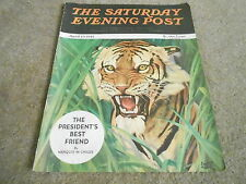 APRIL 19 1941 SATURDAY EVENING POST vintage magazine cover print - TIGER