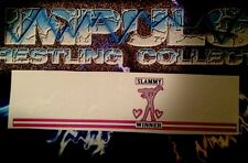 WWE Figure Decals For Mattel Elite Owen Hart Figure Sticker Tights Decal Bret