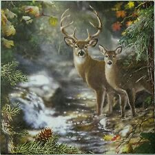 DEER ON A CREEK  2 single LUNCH SIZE paper napkins for decoupage 3-ply