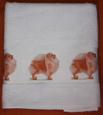 POMERANIAN TOY DOG large cotton hand guest towel SANDRA COEN ARTIST PRINT