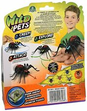 Pets Wild, Spider Interactive with LED lights (Italian version)