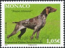 Monaco 2015 Dog Show/German Pointer/Dogs/Animals/Nature/Pets 1v (mc1077)