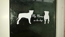 Dog Warning door stickers x 2 FUNNY, WARNING, BEWARE SIGN, STAFFORDSHIRE BULL