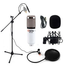Audio Pro Condenser Microphone Studio Sound Recording W/ Boom Stand Pop Filter