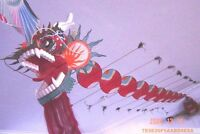 CLASSIC CHINESE BAMBOO Feather KITE,HUGE DRAGON 40 feet Single line,Mask Disc