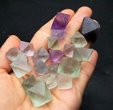103.5g 19 Natural Beautiful colorful octahedral cubic fluorite mineral Specimen