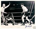 JOE MICELI - BOXING welterweight contender signed 10x8